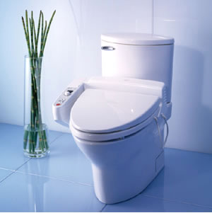 10 reasons why you need a bidet toilet seat